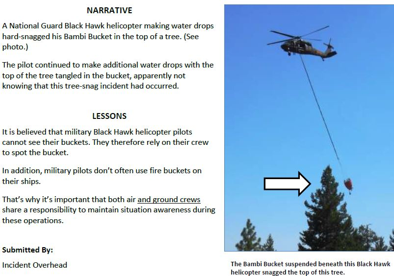 Bambi bucket tree snag