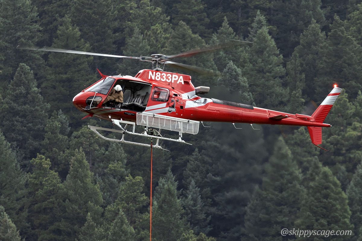 Helicopter 3PA, an AS350B (N833PA)