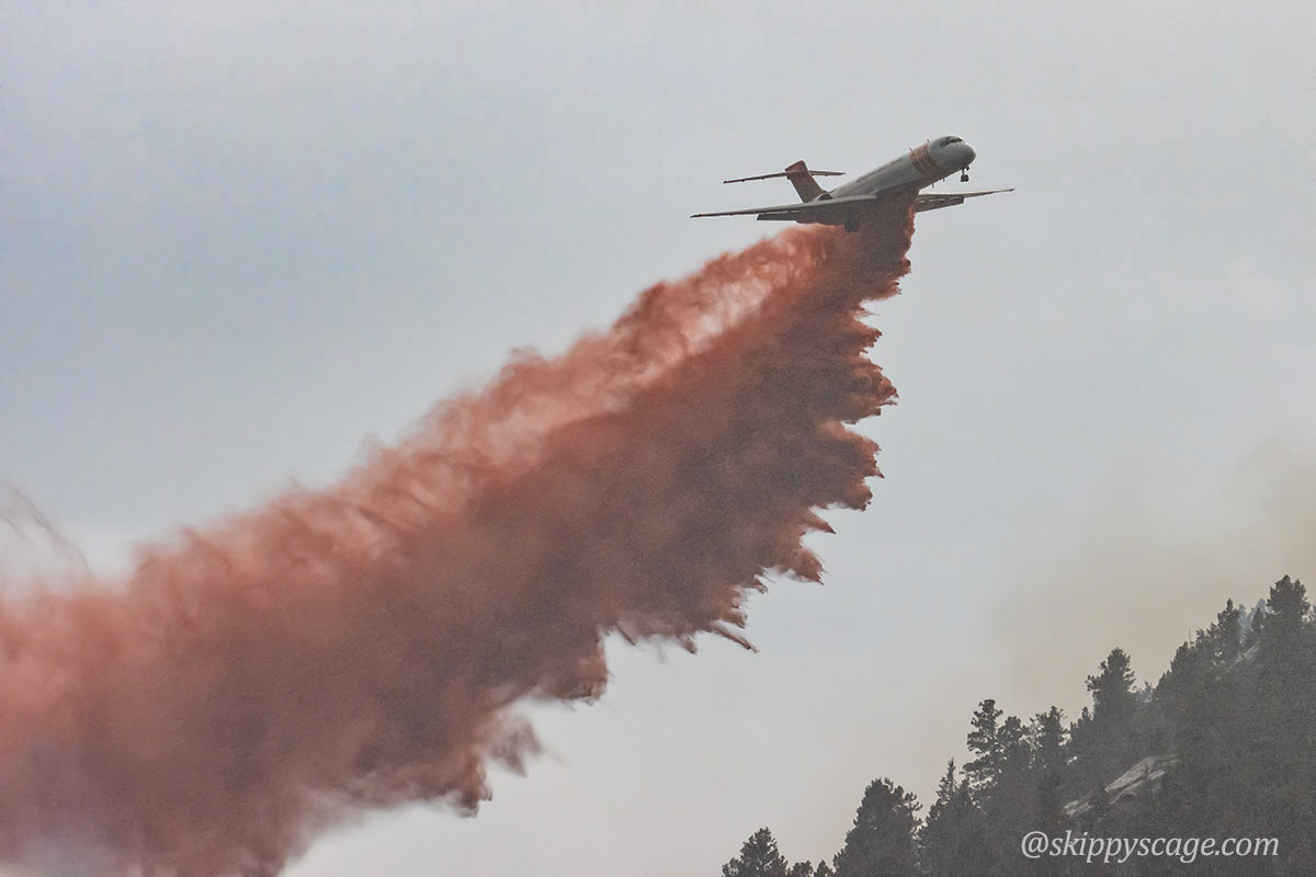 Tanker 101, an MD-87 (N291EA), dropping on the Elephant Butte Fire
